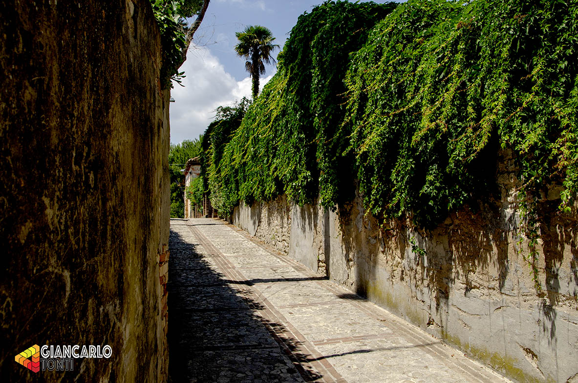 Muri verdi ©2018 Giancarlo Tonti